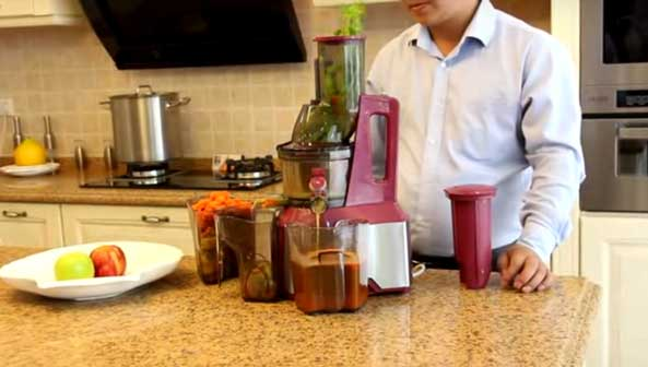 Vegavita wide juicer with celery