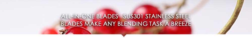 SUS301 blades